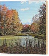 Green Pond Wood Print