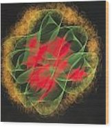 Green Red Gold Abstract Wood Print