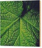 Green Ribbons Of Life Wood Print
