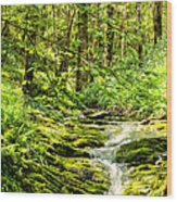 Green River No2 Wood Print