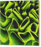 Green Rose Wood Print
