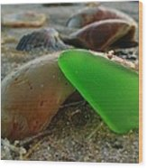 Green Sea Glass And Shells Hatteras Island 9 10/17 Wood Print