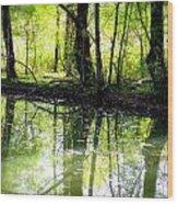Green Shadows Wood Print