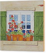 Green Shutters With Red Flowers Wood Print