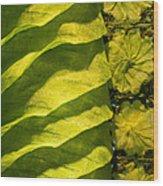 Green Silk 02 Wood Print