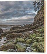 Green Stone Shore Wood Print