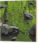 Green Stream Wood Print