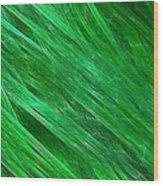 Green Streaming Wood Print
