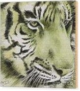 Green Tiger Wood Print by Summer Celeste