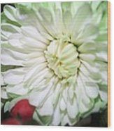 Green Tiped Wood Print