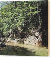 Green Waters Wood Print