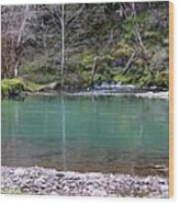 Green Waters  Wood Print by Tim Rice