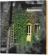Green Window Wood Print