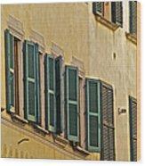 Green Window Shutters Of Florence Wood Print