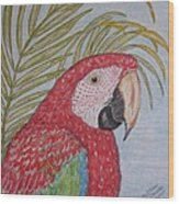 Green Winged Macaw Wood Print