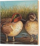 Green Winged Teal Wood Print
