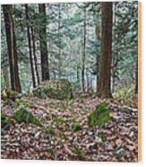 Green Woodland Beauty Wood Print