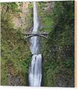 Greenery Of Multnomah Falls Wood Print