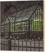 Greenhouse In Winter #2 Wood Print