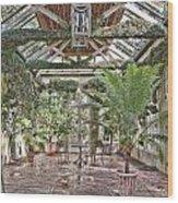 Greenhouse Splendor Wood Print