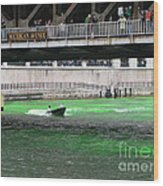 Greening The Chicago River Wood Print