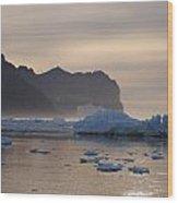 Greenlandic Coast In Mist Wood Print