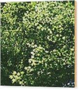 Greenleaves Wood Print