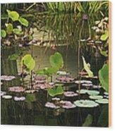 Greens On A Pond 2 Wood Print
