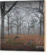 Greenwood Cemetery 1 Wood Print