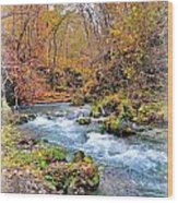 Greer Spring In Fall Wood Print