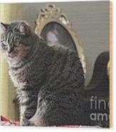 Greeting Card Cat Wood Print