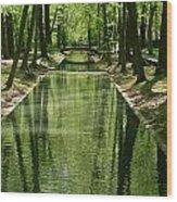 Gren Green Wood Print