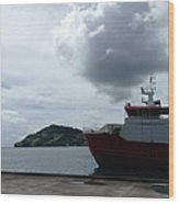 Grenadines Wharf Wood Print