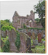 Grey Abbey Cemetery Wood Print