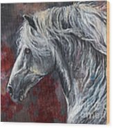 Grey Andalusian Horse Oil Painting 2013 11 26 Wood Print