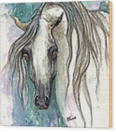 Grey Arabian Horse 2013 11 26 Wood Print