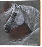Grey Arabian Horse Soft Pastel Drawing 13 04 2013 Wood Print