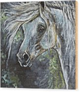 Grey Pony With Long Mane Oil Painting Wood Print
