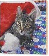 Grey Tabby Cat With Santa Claus Hat Wood Print