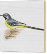 Grey Wagtail, Artwork Wood Print
