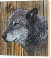 Grey Wolf On Wood Wood Print