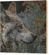 Grey Wolf Profile 3 Wood Print