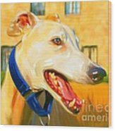 Greyhound Painting Wood Print by Iain McDonald
