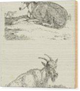 Greyhounds And Goat, Jan Dasveldt Wood Print