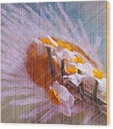 Grid Above Flowers Wood Print