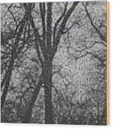 Grief 2 Wood Print