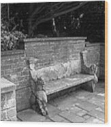 Griffin Bench Wood Print