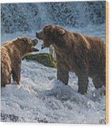 Grizzlies Fighting Wood Print