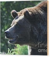 Grizzly-7755 Wood Print