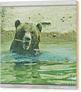 Grizzly Bath Wood Print